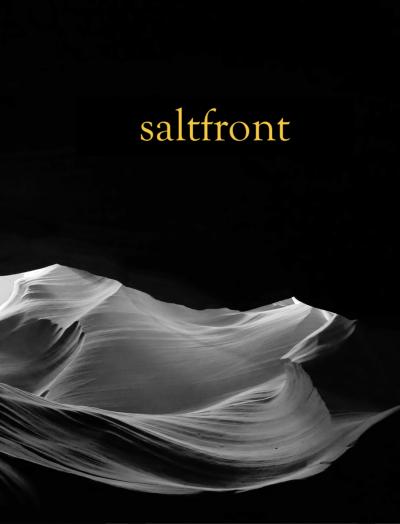 Recent cover image or website screenshot for saltfront