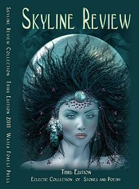Recent cover image or website screenshot for Skyline Review