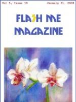 Recent cover image or website screenshot for Flash Me Magazine