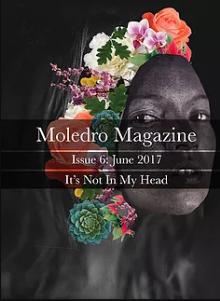 Recent cover image or website screenshot for Moledro Magazine