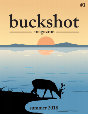 Recent cover image or website screenshot for Buckshot Magazine