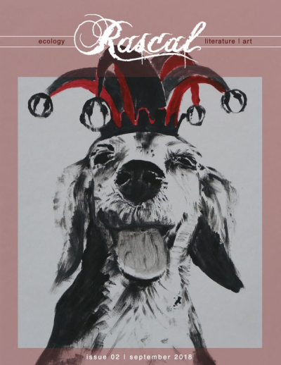 Recent cover image or website screenshot for Rascal Journal
