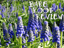 Recent cover image or website screenshot for Bare Root Review