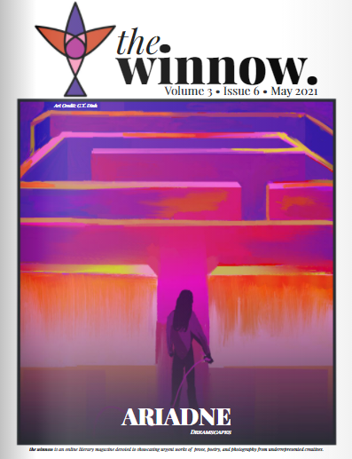 Recent cover image or website screenshot for the winnow magazine
