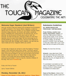 Recent cover image or website screenshot for The Toucan