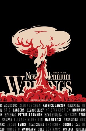 Recent cover image or website screenshot for New Millennium Writings