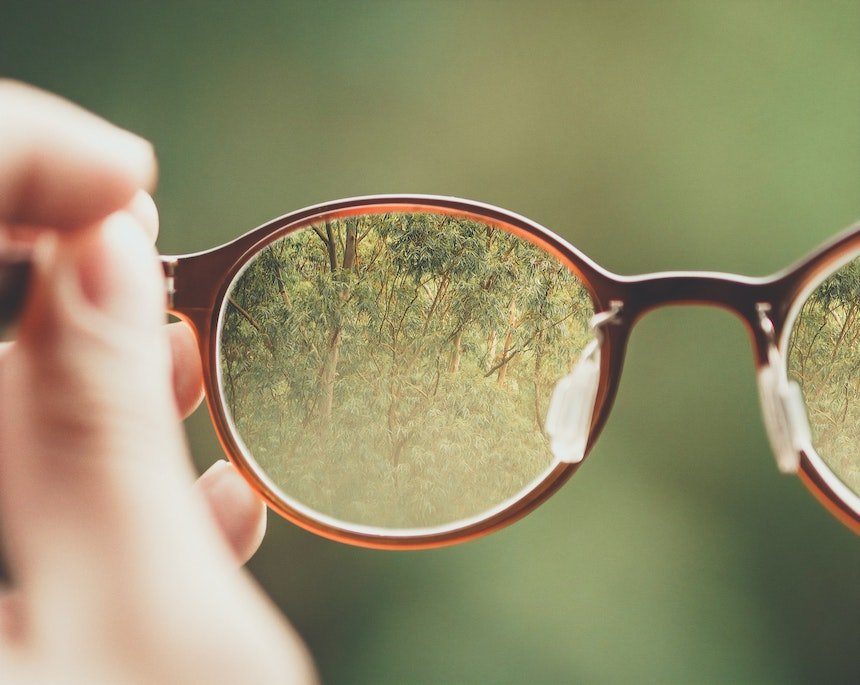 A grove of trees comes into focus through a pair of glasses